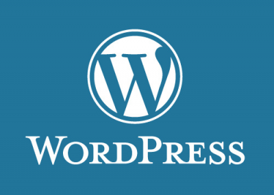 First-Hand Advice: Practical Tips From Top WordPress Pros
