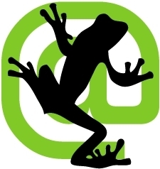 5 Critical SEO Issues Discovered with Screaming Frog
