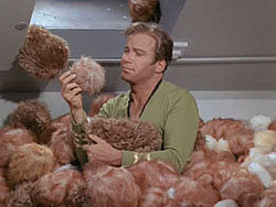 Star Trek: How Many Tribbles Will Fit in Your House?