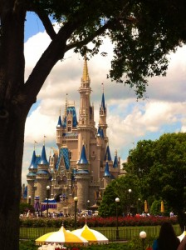 Disney World and Disneyland Open for 24 Hours on May 24!