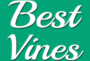 Facebook's fastest-growing page in the U.S.? Best Vines