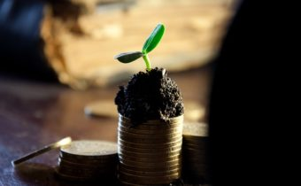 When should you start growing Financially