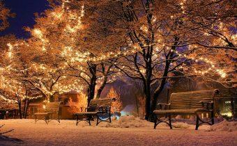 9 Uses for Christmas Lights